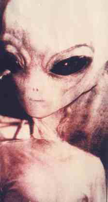 Le tipologie di alieni classificati nel mondo