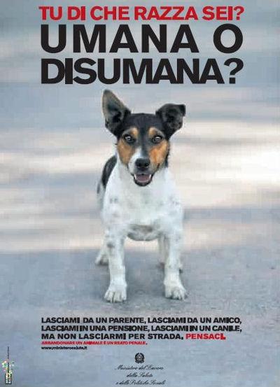 http://www.chupacabramania.com/immagini/animali_foto/2008_Cani_no-abbandono.jpg