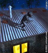 chupacabra sul tetto