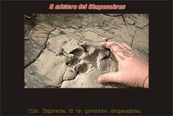 Le impronte del chupacabra