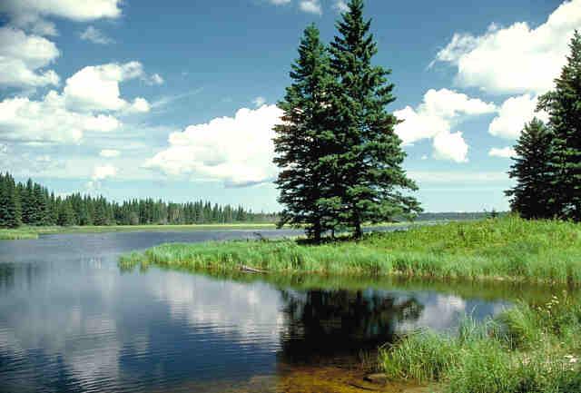 Il mostro Manipogo del lago Manitoba