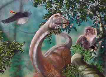 Illustrazuine di un sauropode.