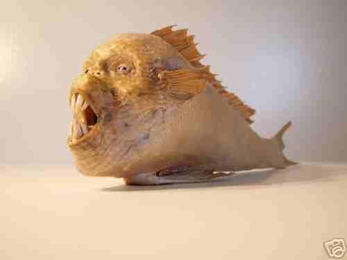 Pesce evoluto in uomo o viceversa?