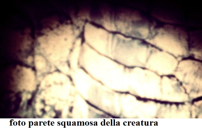 Testimonianza creatura Alvignanello