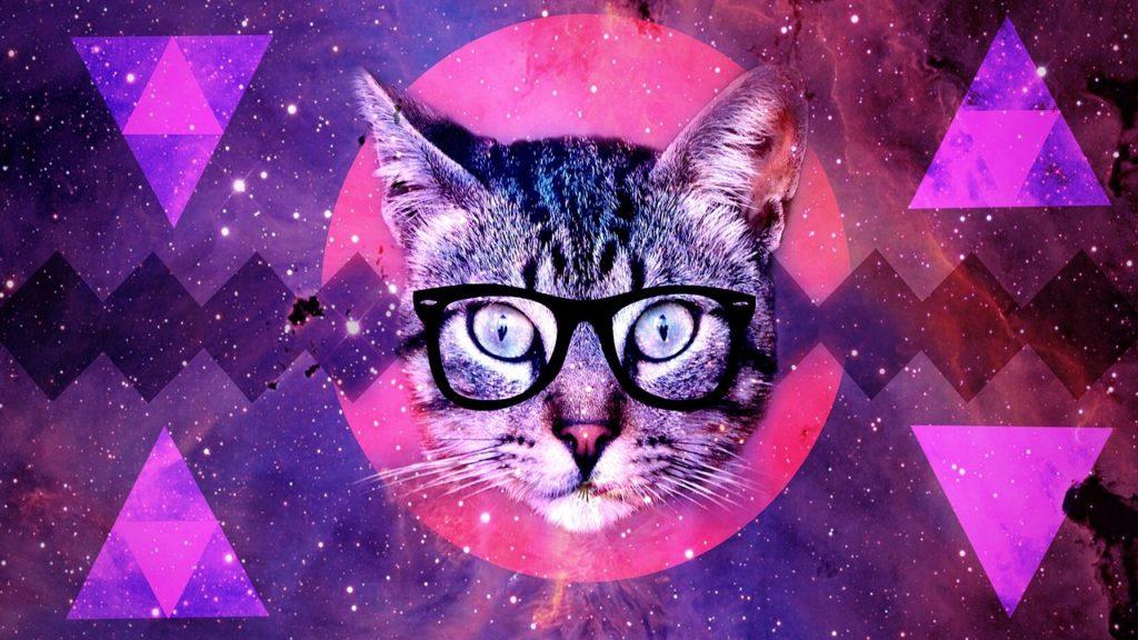 La teoria dei gatti alieni