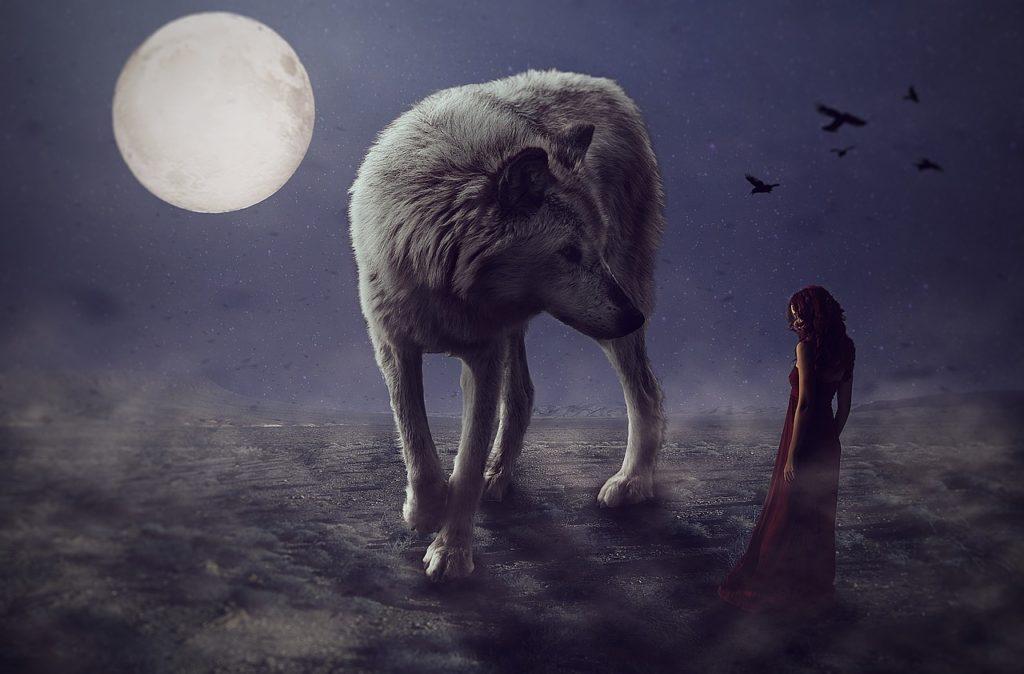 Brittany Allen e Yuki il lupo