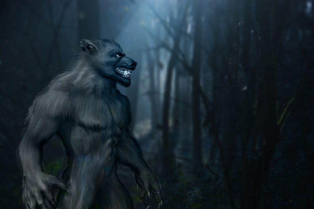 Mistero chupacabra o lupo mannaro